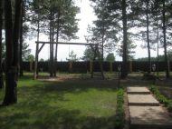 Шикарная усадьба в сосновом лесу, с.Сухолучье.