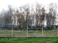 Мечтаете купить дом в хорошем месте в Василькове?